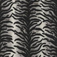 AS Creation White and Black Tiger Print