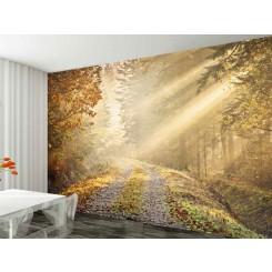 1Wall Golden Forest Wallpaper Mural