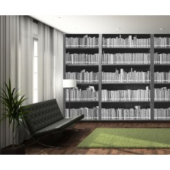 1Wall Bookshelf wallpaper wall mural Bookshelf-001